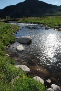Rarick Creek at Wilder Colorado image