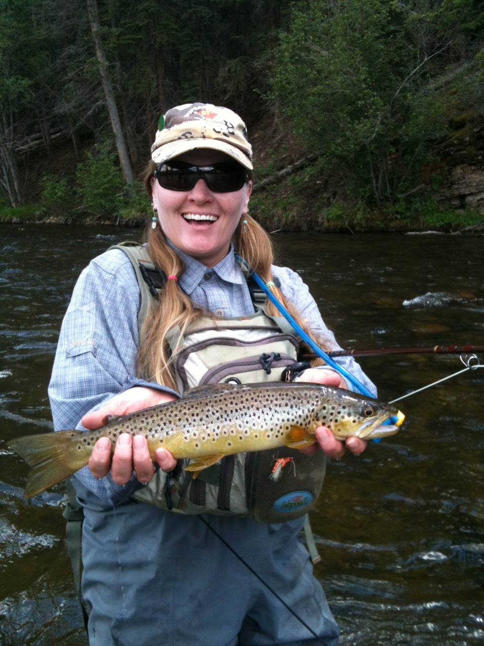 Summer fly fishing report at wilder on the taylor wilder for Trouts fly fishing reports