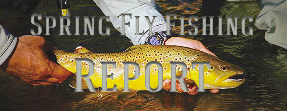 Taylor River Spring Fly Fishing Report