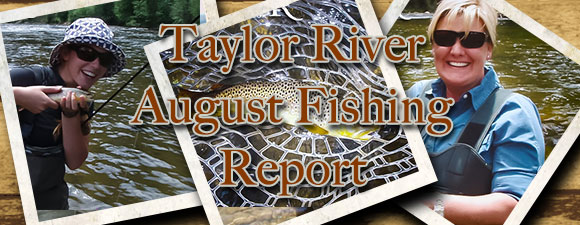 August Fly Fishing Report