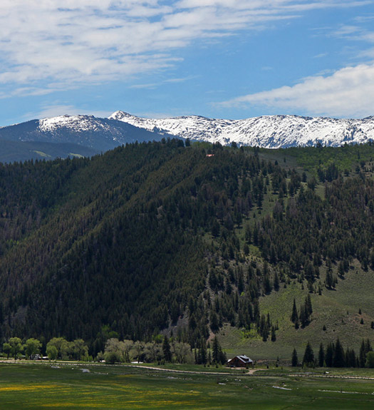 mountains wilder