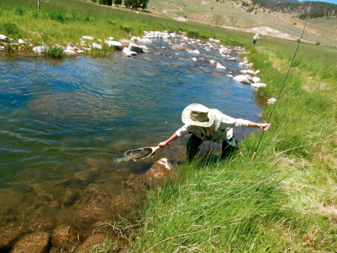 Fly-Fishing on The Taylor River