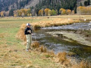 Taylor River Fly Fishing Report