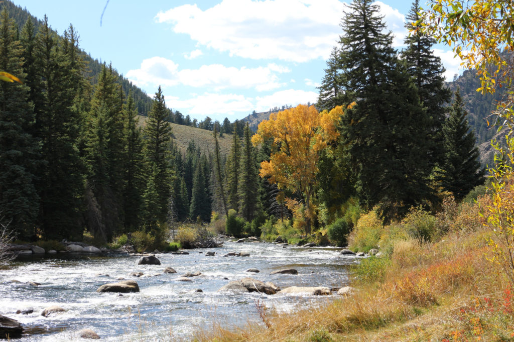 Crested Butte land for sale