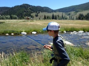Taylor River Summer Fishing Report