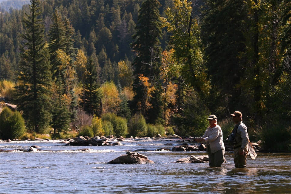 Wilder on the Taylor Fly Fishing Report: September 2018