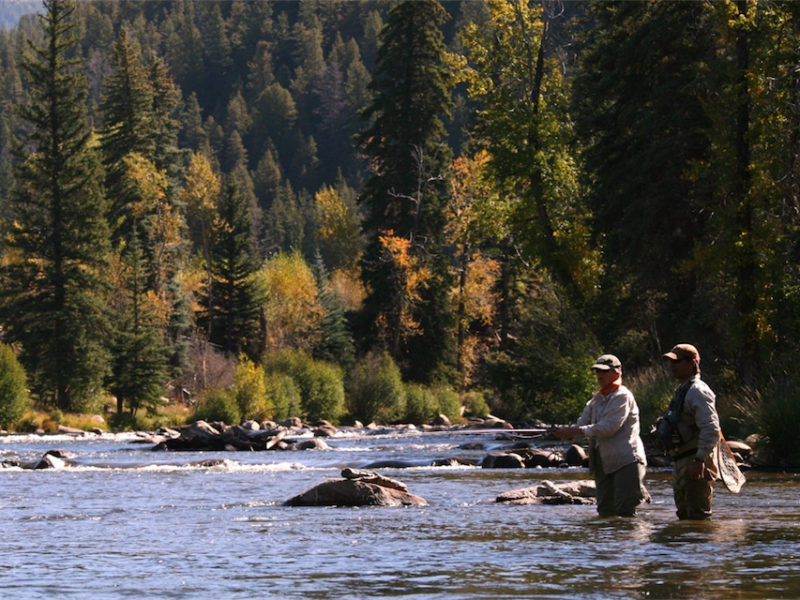 Fly Fishing Report September