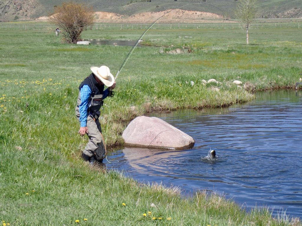 Fly Fishing Report June 2019 on Wilder Ponds