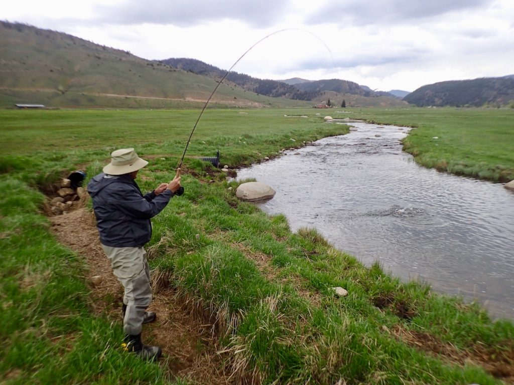 Fly Fishing Report June 2019 Dream Stream