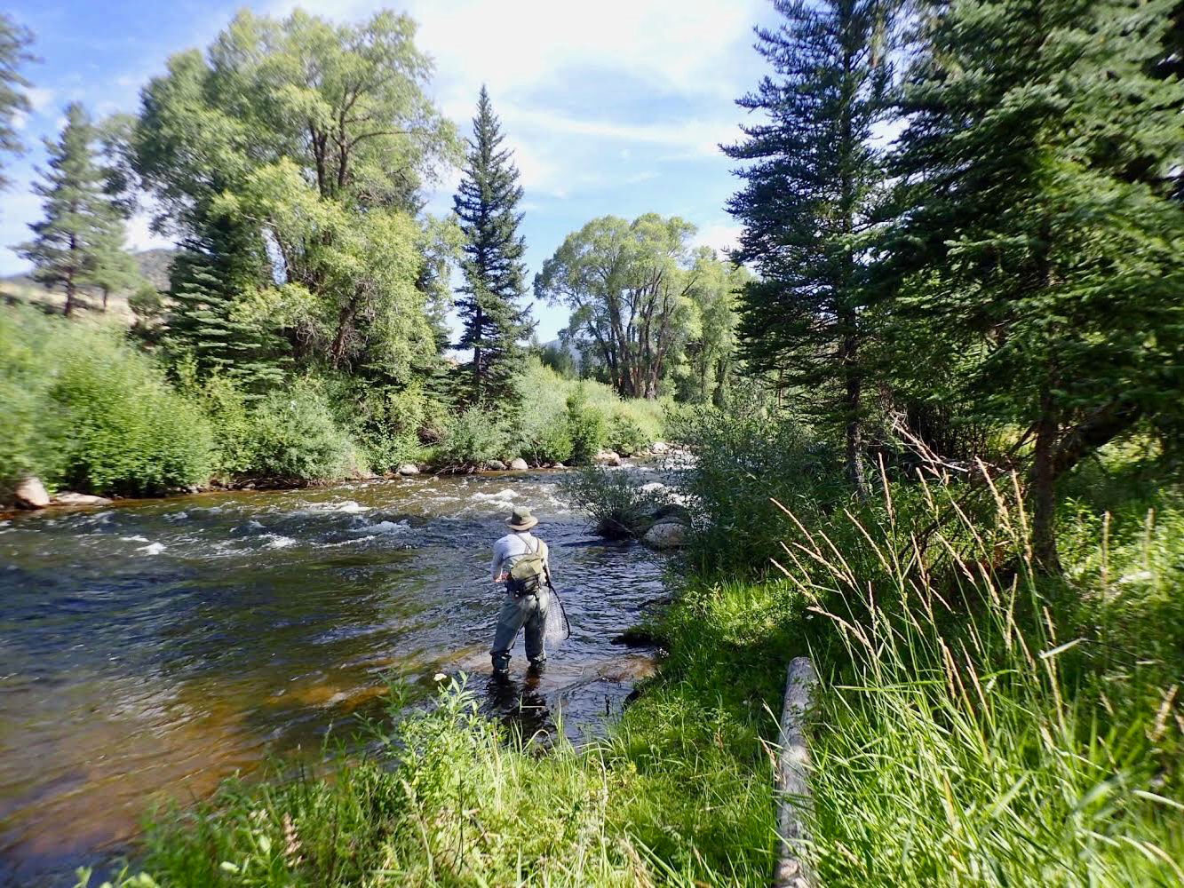 Taylor River Fishing Report August 2019